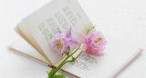 book_corbisimages.com.jpg.160x100_q85